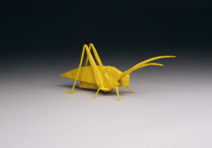Yellow Jacket   Origami   Nature   210x300