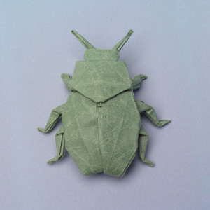 Insects and kin pdf their origami