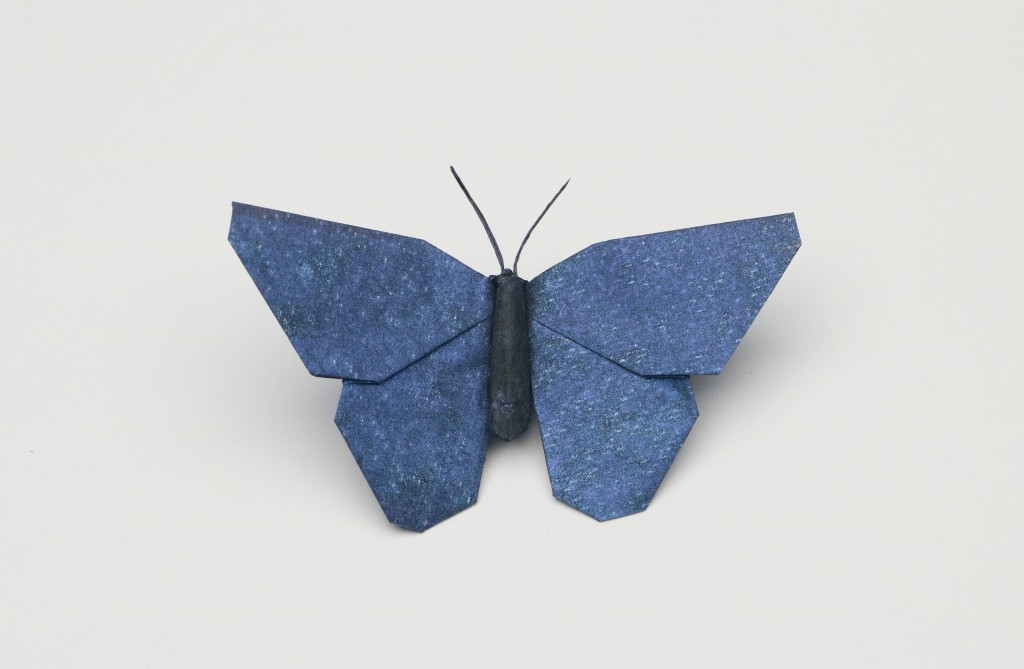 Mary Annes Butterfly Opus 733 Robert J Lang Origami